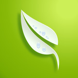 Vector logo Fresh green leaf  Spring concept