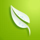 Vector logo Fresh green leaf  Spring concept