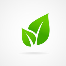 Eco Icon Green Leaf Vector Ill...