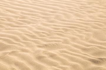 Fototapeta Sand Dune Desert Texture