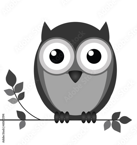 Foto op Canvas Uilen cartoon Wise owl on branch isolated on white background