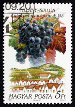 Postage Stamp Hungary 1990 Cab...