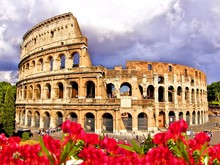 View Of The Colosseum With Flowers, Rome Italy
