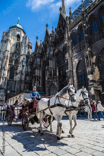 Papiers peints Vienne Horse-drawn Carriage in Vienna at the famous Stephansdom Cathedr