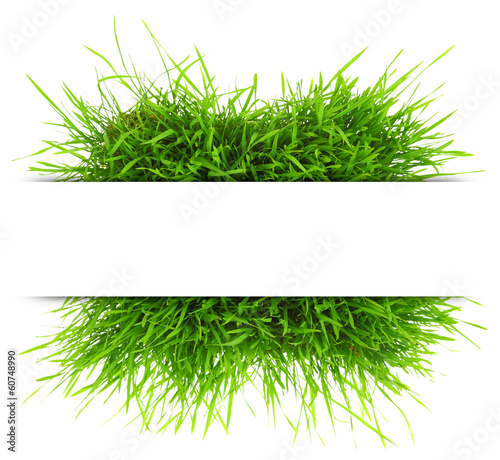 Papiers peints Herbe Natural banner with fresh grass isolated on white background