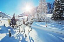 Pferdeschlitten Im Dischmatal – Schweiz