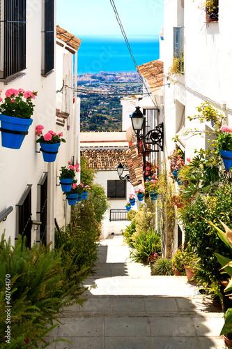 Beautiful street with flowers in the Mijas town, Spain Wallpaper Mural