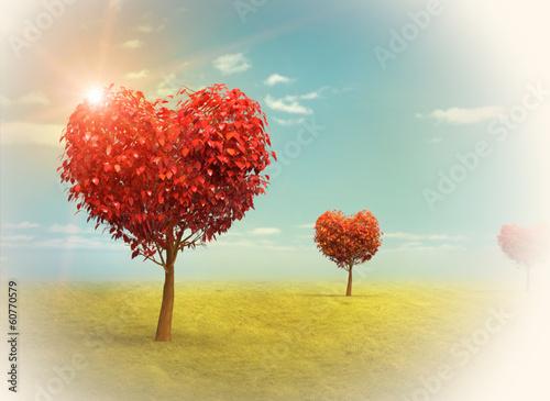 Fototapety, obrazy: Arboles en forma de Corazón