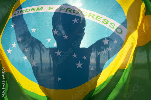 Photo  Brazilian Flag Bright Silhouette Palm Trees