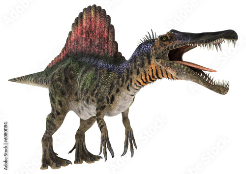 Fototapeta premium Dinozaur Spinozaur