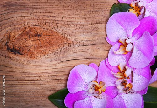 Pink Orchid Flowers on Wooden Background. Beautiful bouquet