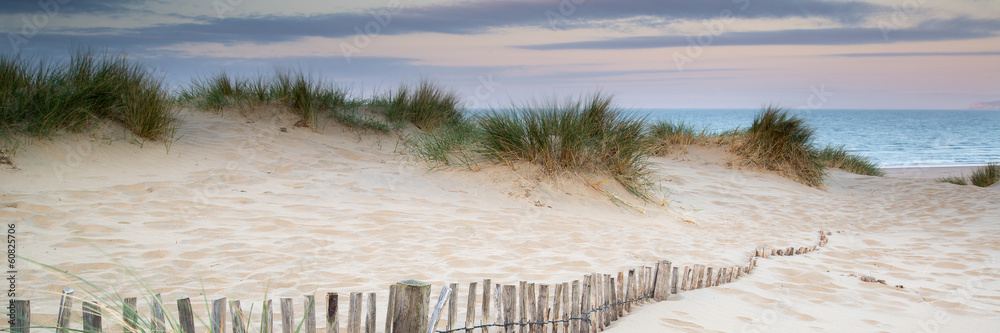 Fototapeta Panorama landscape of sand dunes system on beach at sunrise