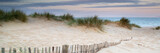 Fototapeta Fototapety z naturą - Panorama landscape of sand dunes system on beach at sunrise