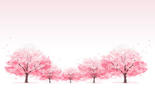 桜並木 Line Of Cherry Blossom Tree Background