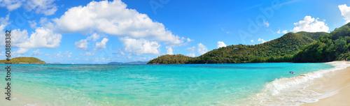 Tropical beach Virgin Islands Beach