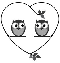 Owl Valentine Lovers On A Heart Branch