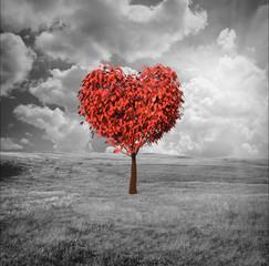 FototapetaÁrbol en forma de Corazón