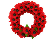 Poppy Day Great Remembrance War World Flanders