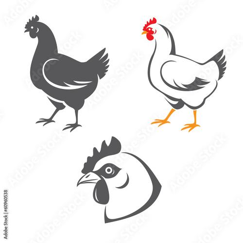 Fotografía  Chicken