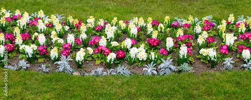 Blooming flower bed #60986331