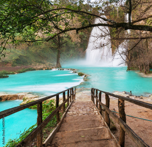 Waterfall in Mexico - 61014941