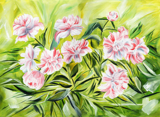 Fototapeta Malarstwo Gentle peonies. Oil painting on canvas.