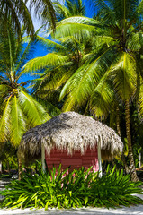 Obraz na SzklePink cottage with a thatched roof on an exotic Caribbean beach
