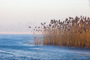 Fototapeta Inspiracje na zimę Lake Pogoria. Winter time landscape in Poland