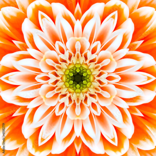 Orange Concentric Flower Center. Mandala Kaleidoscopic design