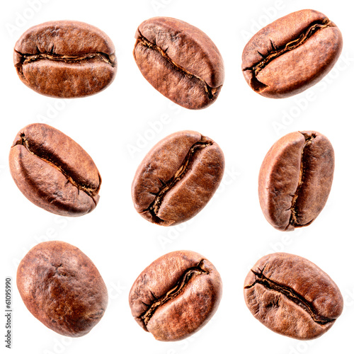 Fotografija Coffee beans isolated on white. Collection