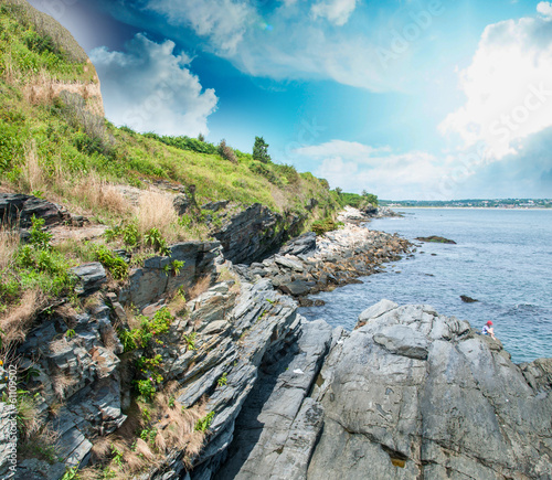 Fotografie, Obraz  Rocks and vegetation over the ocean