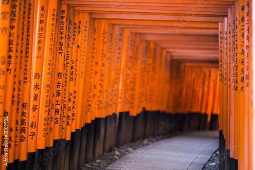 Foto op Plexiglas Japan Fushimi Inari Taisha shrine. Kyoto. Japan