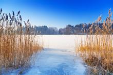 Winter Scenery Of Frozen Lake In Poland