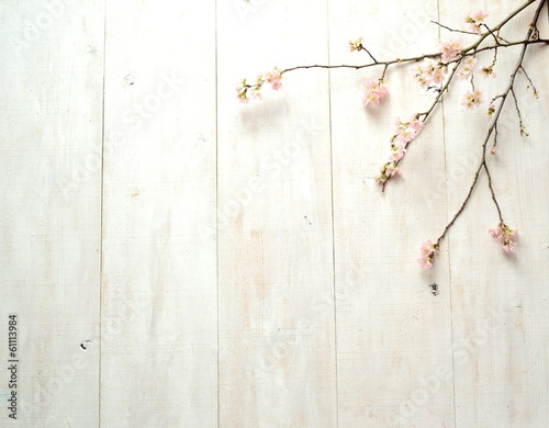 Tuinposter Kersen Cherry blossoms on white wooden background