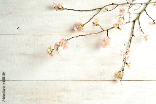 Foto op Canvas Kersenbloesem Cherry blossoms on white wooden background