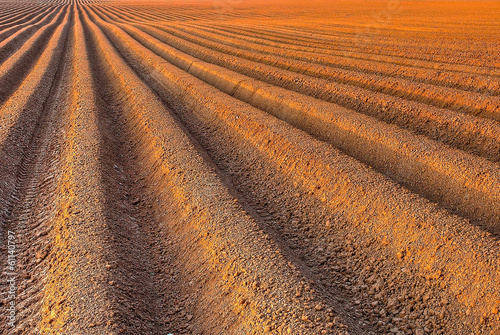Photo  Plough agriculture field before sowing