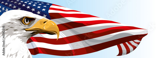 The national symbol of the United States of America #61142398