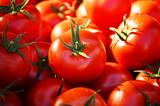 Świeże organiczne pomidory