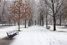 The Snowfall In Boston