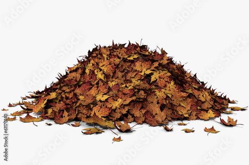 Fotografie, Obraz  3d illustration of a leaf pile