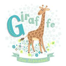 Letter G - Giraffe