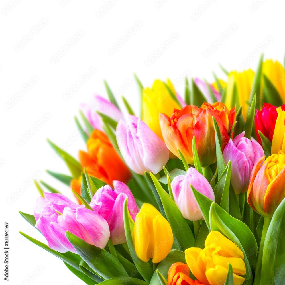Fototapety, obrazy: bunter Blumenstrauß