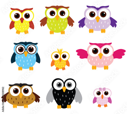 Fotografie, Obraz  Owls colors