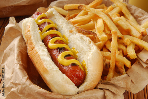 Fotografie, Obraz  Mustard dog with fries in a basket