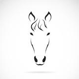 Vector of a horse face. Animals.