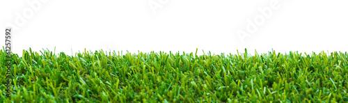 Papiers peints Herbe Close up of golf green grass