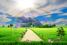 Green Field With A Rainbow