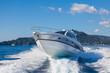 canvas print picture - motor boat