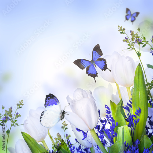 Naklejka na szybę White tulips with blue grass and butterfly. Floral background.
