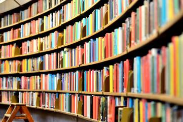 FototapetaRound bookshelf in public library